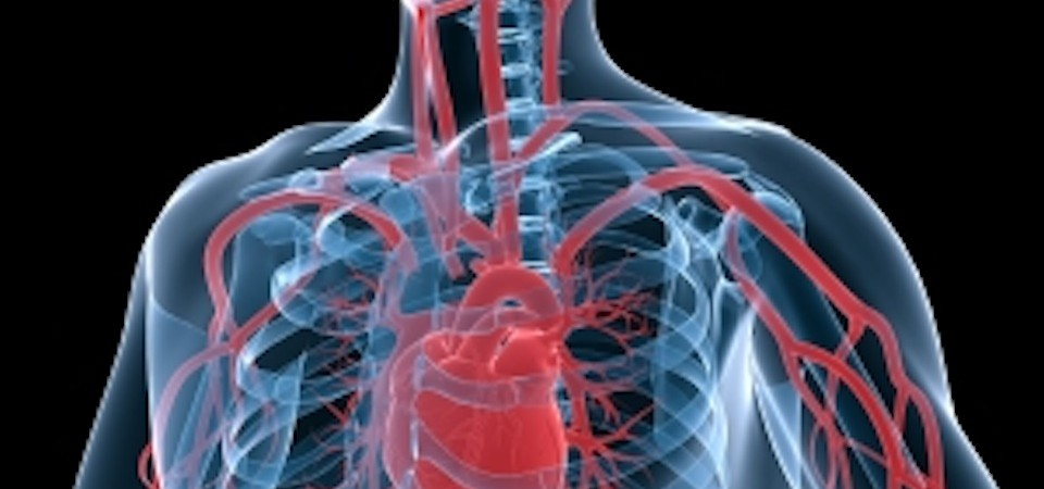 Calcium Supplements and Heart Attacks